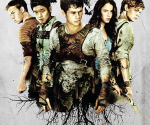 thomas, the maze runner, and newt image