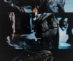 dinosaurs, film, and Jurassic Park image