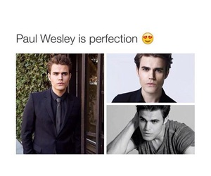 tvd, paul, and perfection image