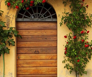beautiful, flowers, and italy image