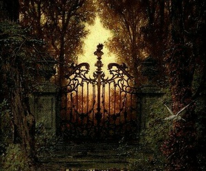 fantasy, forest, and gate image
