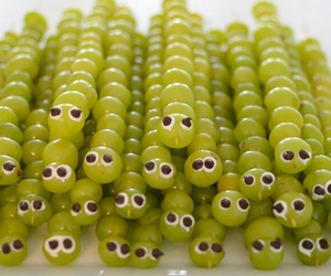 grapes, caterpillar, and diy image