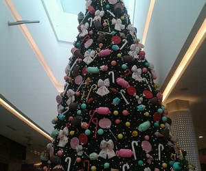 candy, happy, and tree image