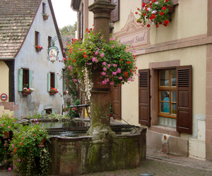 building, flowers, and fontaine image