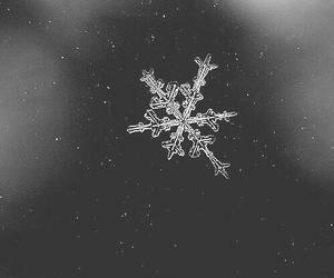 snow, winter, and snowflake image