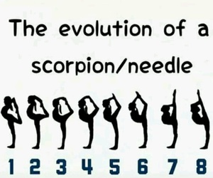 scorpion, needle, and fitness image