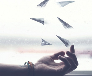 hand, fly, and plane image