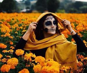 dia de muertos and méxico image