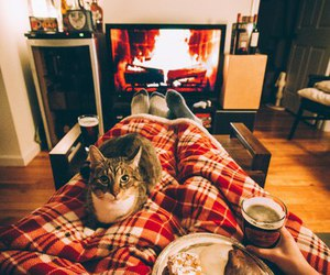 tenderness, hottea, and warmth image