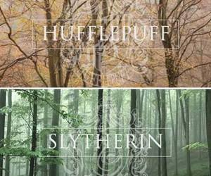 harry potter, hogwarts, and house image