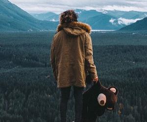 bear, beautiful, and photo image