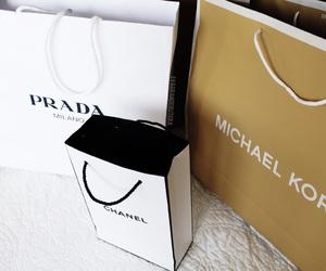 Michael Kors, palms, and perfume image