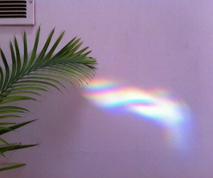 rainbow, plants, and grunge image