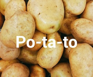 haters, potato, and quote image