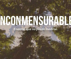 inconmensurable, words, and frases image