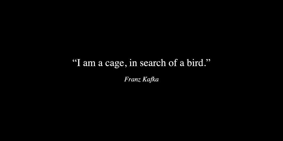 kafka, bird, and cage image