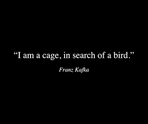 kafka, bird, and cage image