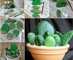 cactus, piedras, and plantas image