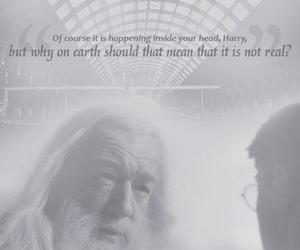 dumbledore and harry potter image