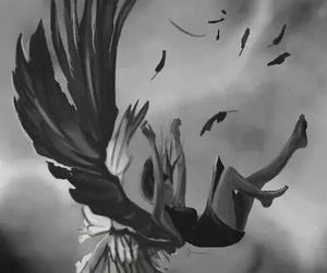 angel and hush hush image
