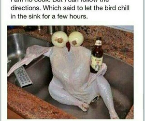 funny, Chicken, and chill image