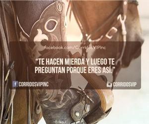 mierda, persona, and corridos vip image