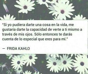 frases, Frida, and frida kahlo image