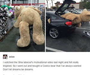 cuddles, giant, and gift image