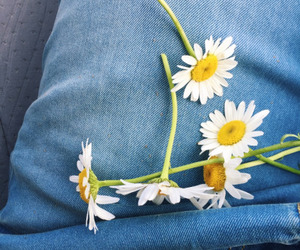 flowers, indie, and jeans image