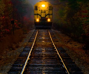 photography, train, and nature image