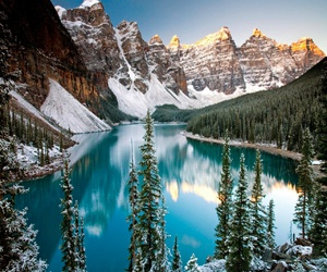 canada, mountains, and tree image