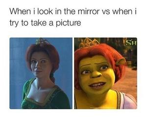 funny, mirror, and shrek image