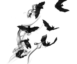 bats, overlay, and smoke image