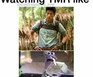 minho, the maze runner, and funny image