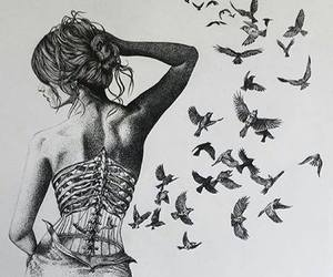 birds, drawing, and seagulls image