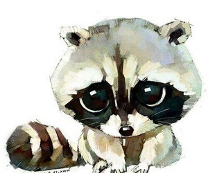 raccoons and cute image