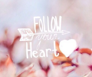 heart, follow, and background image