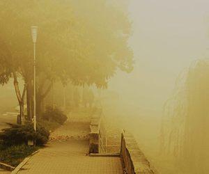 fog, romania, and street image