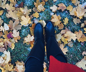 autumn, shoes, and nature image
