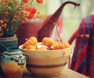 autumn, pumpkins, and fall image
