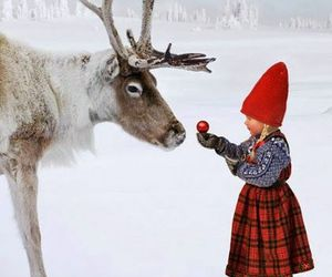 snow, reindeer, and winter image