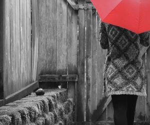cold, knit, and red umbrella image
