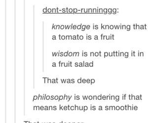 funny, tomato, and tumblr image