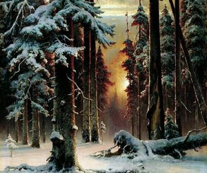 forest, landscape, and snow image