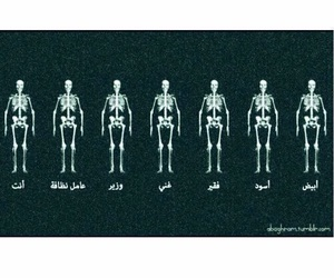 we are all the same image