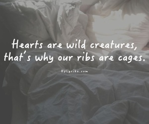 quotes, love, and cage image
