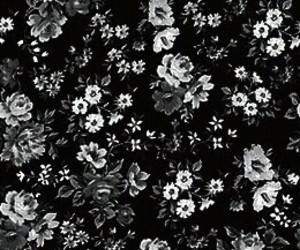 flowers, background, and black image