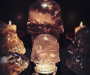 Halloween, skulls, and spooky image