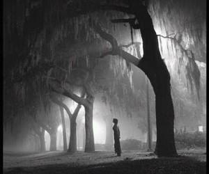black and white, rain, and girl image