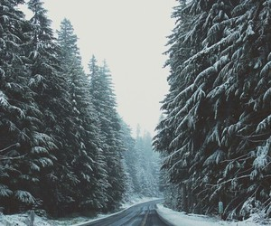 photography, roads, and snow image